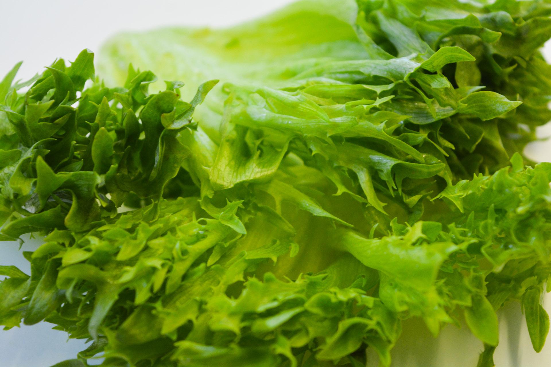 Salaatit ja raasteet